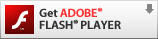 Download ADOBE Flash Player to view the video